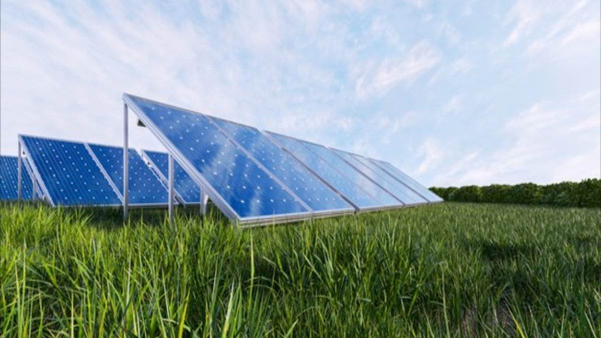 Solar Panel 101: 5 Perks of Buying Solar Panels